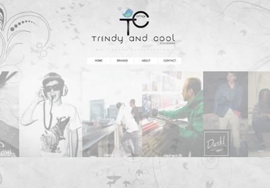 Progetto realizzato per TRENDY AND COOL da Ermes Digital, Sudio grafico, web e seo Milano